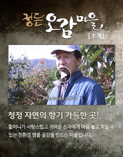 정든오감마을 동영상소개